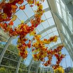 Chihuly Garden and Glass 3